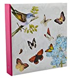 Arpan Large Cream Ring Binder Photo Album Holds 500 Photos - Butterfly by ARPAN