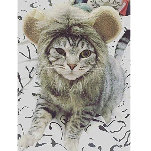 Katzen Hundekostüm Löwenmähne Löwe Mähne Perücke für Hunde Hundeausstellung Fest Fasching Dog Show Kostüm (Hund Halloween-kostüme Einfach Zu Machen)