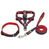 Denim Heavy Duty Hundehalsband Leine-Traktion Seil Einstellbare Durable Leine Set, Ideal für Das Tägliche Training Walking Running (Red Set) S