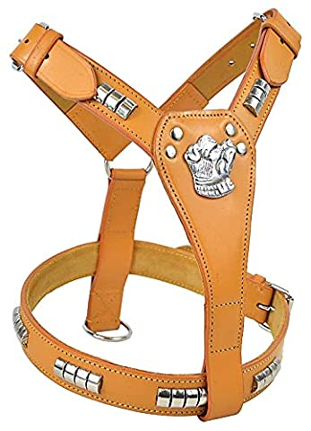 Avon Pet Products Staffordshire Bull Terrier Chrome Studded Leather Dog Harness, Tan