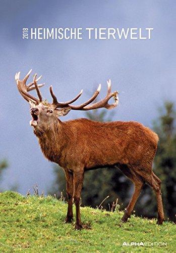 Heimische Tierwelt 2018 - Bildkalender (24 x 34) - Tierkalender