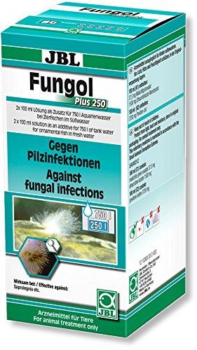 Fungol Plus 250 Heilmittel Gegen Haut- Pilzinfektionen für Aquarienfische