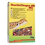 Lucky Reptile Bearded Dragon Mix Juvenil 35 g, 1er Pack (1 x 35 g)