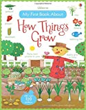 My First Book About How Things Grow (My First Books)