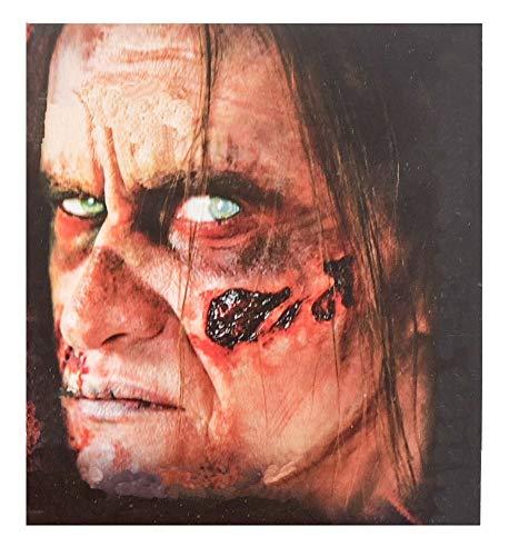 shoperama Professionelle 3D Horror Wunden Tattoo Schnittwunde Einschussloch Zombie verottende Haut Halloween Special FX Make-Up, Variante:Zombie