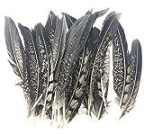 ERGEOB Kupfer Hühnerfeder 10-15 cm/ 4-6 Zoll Länge Ohrringe Halsketten Seitenende dekorative Materialien 20/50/100 stück