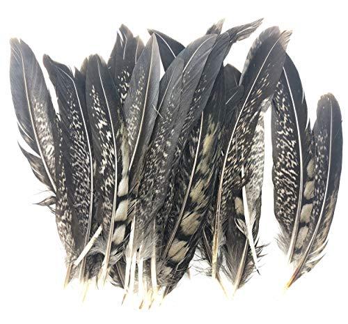 ERGEOB Kupfer Hühnerfeder 10-15 cm/ 4-6 Zoll Länge Ohrringe Halsketten Seitenende dekorative Materialien 20/50/100 (Huhn Vogel Kostüm)