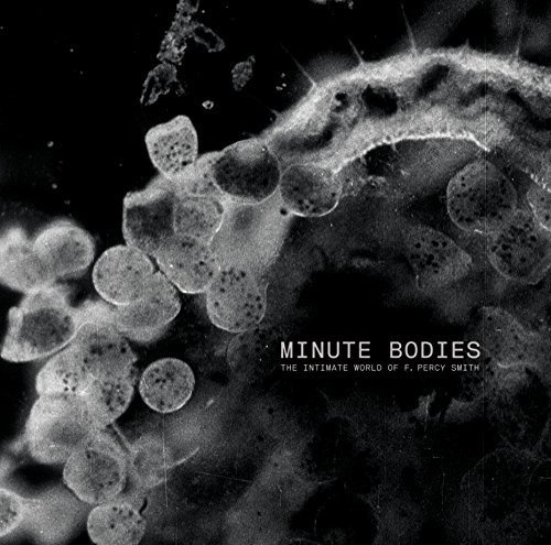 minute-bodies-the-intimate-world-of-f-percy-smith