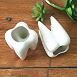 RISHIL WORLD 2Pcs Ceramic Plant Flower Pot Succulent Garden Cute Teeth White Home Decorative Storage Container