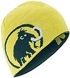 Mammut Mütze Logo Beanie, Dark Teal-Canary, one Size
