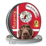 Rmolitty Flea Tick Collar for Dog Pet, Natural Oils for 8 Months Protection