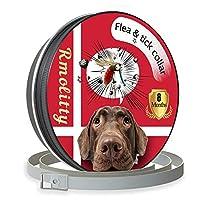 ¿Por qué elegir Rmolitty Collar Antiparasitario Para Perro? Este collar antiparasitario para perro es nuestro nuevo producto en 2019. Investigamos cientos de plantas. Seguir los principios de eficacia e inocuidad para personas y perros. Finalmente, s...