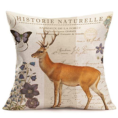 Royalours Kissenbezug, lustige Tiere, niedlicher Elefant, mit Brille, dekorative Baumwollleinen, 45,7 x 45,7 cm, quadratischer Kissenbezug 18