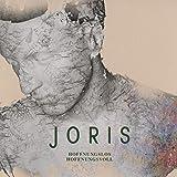 Hoffnungslos Hoffnungsvoll by JORIS (2015-08-03)