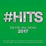 #hits 2017-die Hits des Jahres