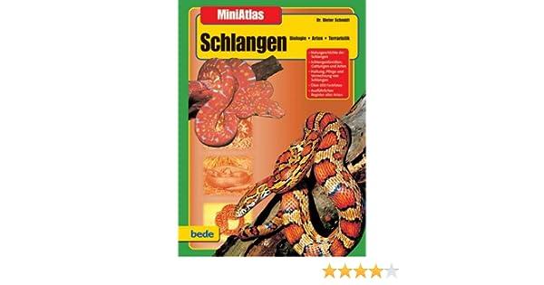 Schlangen, MiniAtlas: Amazon.de: Dr. Dieter Schmidt: Bücher