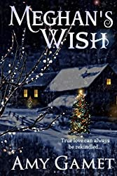 Meghan's Wish (Love and Danger) (Volume 4) by Amy Gamet (2012-10-16)