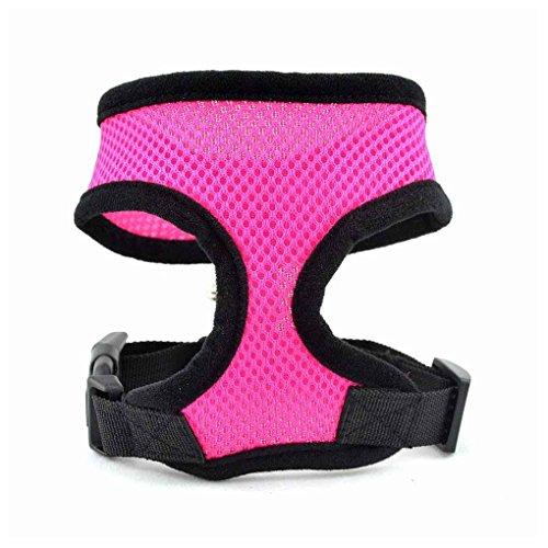 Lidahaotin Haustier-Hundesicherheitsgeschirr Easy Control Netzbody Leine Brustgurte Gürtel Pink L