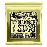 Ernie Ball snaren Mammoth Single Pack