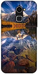The Racoon Lean NATURE hard plastic printed back case / cover for Coolpad Note 3 Lite
