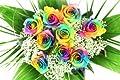Bunter Blumenstrauß mit 10 Regenbogenrosen - Rosenbote Blumenversand von Blumenversand Rosenbote auf Du und dein Garten