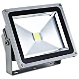 REOLites 50W LED FloodLight for Outdoor, Events and Garden (White)