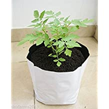 Cocogarden Large Size Poly Growbags Uv Stabilized 5 Qty [28Cms(L)X28Cms(W)X48Cms(H)(Pack of 5),White