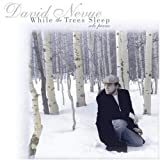 Songtexte von David Nevue - While the Trees Sleep