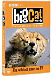 Big Cat Week - Series 3 [DVD]