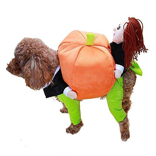 Moolecole Hund Warm-Kürbis Hoodie Halloween-Kostüm-Kleidung Jacke Overall Welpen-Katze-Kostüm Bekleidung Winter M