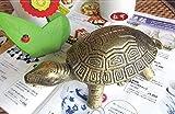 Große kreative Aschenbecher mit Deckel vertikale Mode Persönlichkeit senden Freund geschickt ältesten Langlebigkeit Schildkröte , small bronze (autique gold)