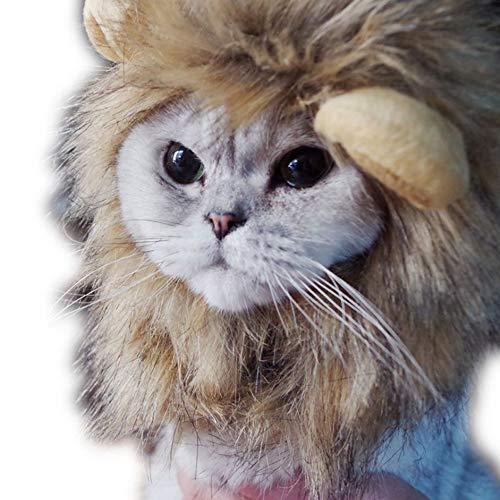 Löwenmähne Haustier Katze Hund Perücke Kostüm mit Ohren - Lustige Haustier Perücke Kleidung Löwenmähne Perücke Hut für Halloween Xmas Party Geeignet für Katzen Welpen