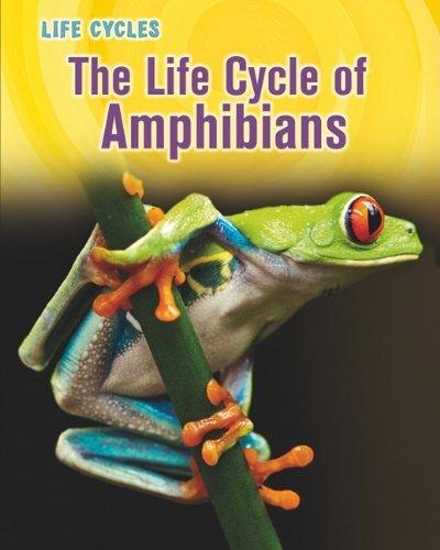 The Life Cycle of Amphibians (Life Cycles (QEB Publishing)) by Darlene R Stille (2011-07-15)