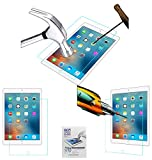 #9: ACM Tempered Glass Screenguard for Apple Ipad 9.7