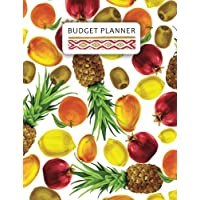Budget Planner: Colorful Tropical Fruit Design : Extra Large budget planner for Aging (24 months expense tracking): Volume 1