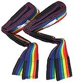 Tragegurt 2-Personen Transportgurt für Möbel und Umzug, Tragehilfe 2-tlg., Hebegurt bis 300 kg, Regenbogenfarben