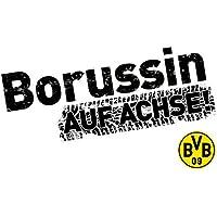 Suchergebnis Auf Amazonde Für Borussia Dortmund Sticker