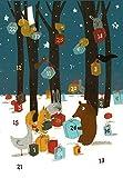 Weihnachten bei den Tieren im Wald: Adventskalender von Isabel Pin