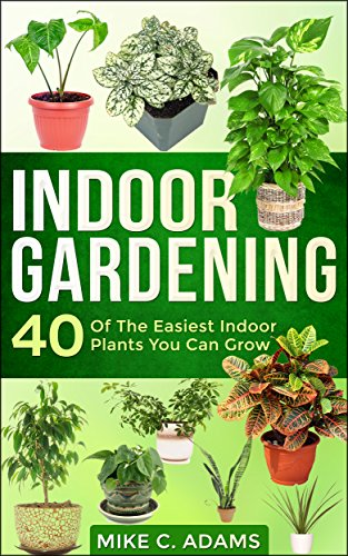 indoor-gardening-40-of-the-easiest-indoor-plants-you-can-grow-house-plants-and-indoor-gardening-guid