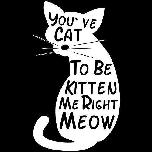 You've Cat To Be Kitten Me Right Meow - Herren T-Shirt von Fashionalarm | Fun Shirt Spruch Spaß You Have Got To Be Kidding Me Right Now Katze Kater Tierliebhaber Job Arbeit Freizeit lustig Schwarz
