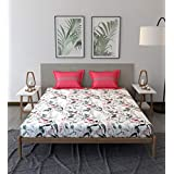 Trident Comfort Living 100% Cotton Double Bedsheet with 2 Pillow Covers Simone Pink