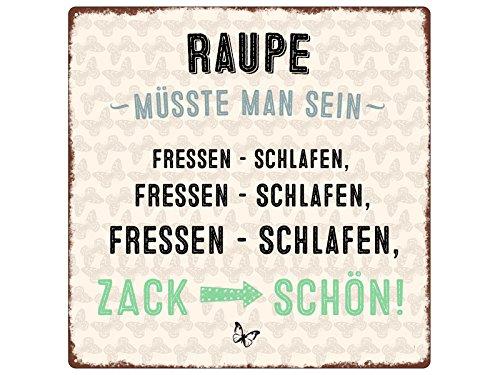 20x20cm METALLSCHILD Türschild RAUPE MÜSSTE MAN SEIN Spruch Lustig Diät Shabby