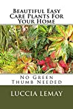 Beautiful Easy Care Plants For Your Home: No Green Thumb Needed