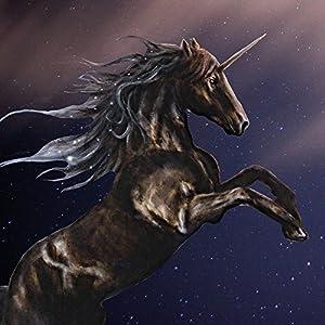 Nintendo DS Case Skin Sticker aus Vinyl-Folie Aufkleber Einhorn Unicorn Schwarz Pferd