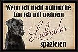 crealuxe Fussmatte Wenn Ich Nicht aufmache Bin Ich mit Meinem Labrador spazieren- Fussmatte Bedruckt Türmatte Innenmatte Schmutzmatte lustige Motivfussmatte