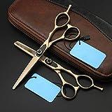 Haute Qualité Ciseaux de Coiffeur, Set de Ciseaux Coiffure Professionnel, Ciseaux Barber Salon en Acier Inox pour Cheveux Garniture votre Barbe et Moustache,D'or