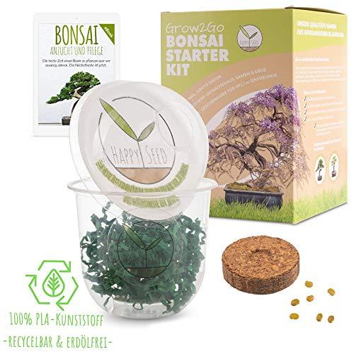 GROW2GO Bonsai Starter Kit Anzuchtset inkl. GRATIS eBook - Pflanzset aus Mini-Gewächshaus, Samen & Erde - nachhaltige Geschenkidee für Pflanzenfreunde (Afrikanischer Blauregen)