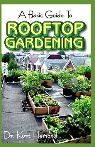 The Basic Guide To Rooftop Gardening: All you need to know about rooftop gardening, how it is set up, its numerous benefits and so much more! -