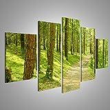 islandburner Bild Bilder auf Leinwand XXL Bild Poster Leinwandbild Wandbilder Kunstdruck 5-teilig AKM-MFP im Wald