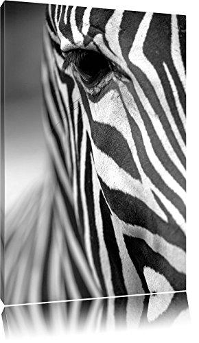 Zebra Nahaufnahme Format: 80x60 auf Leinwand, XXL riesige Bilder fertig gerahmt mit Keilrahmen,...